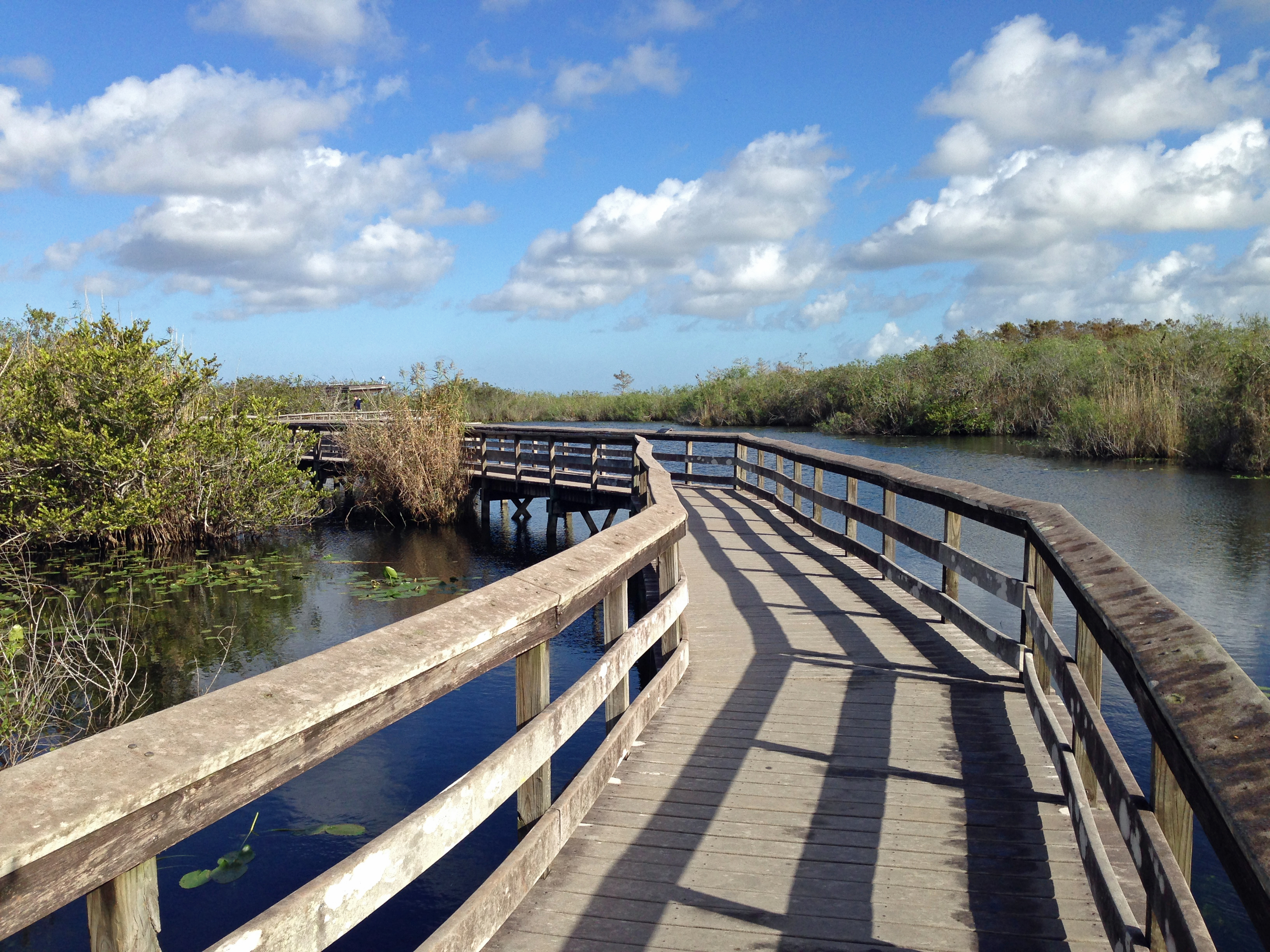 Anhinga_Trail_boardwalk