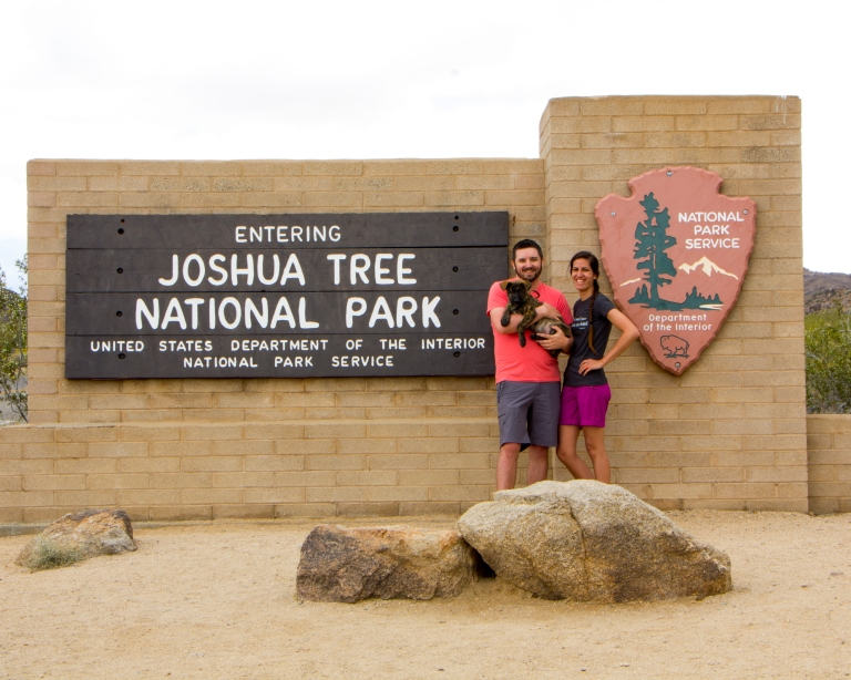 Joshua Tree Sign Blog