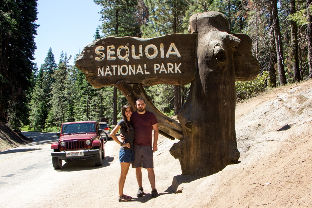 Sequoia Wood Sign